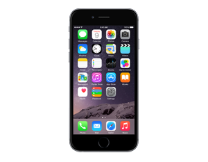 apple-iphone 6 plus - 16gb-space gray-450x350